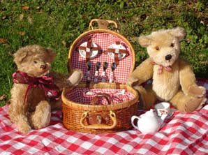 TB picnic